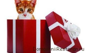 подарок кот в коробке