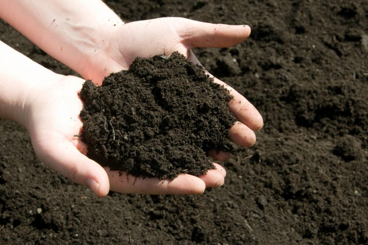 проверка почвы
