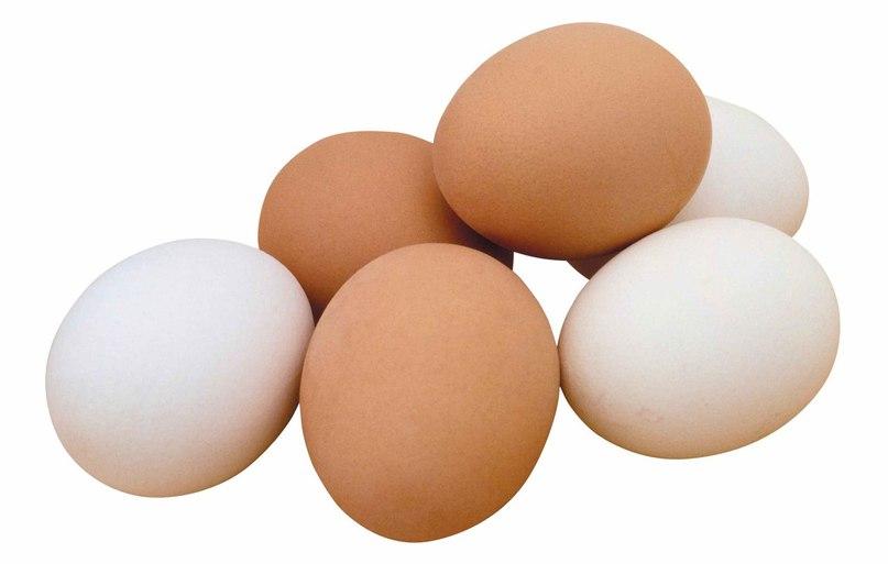 Если вы заболели – откройте холодильник. Куриное яйцо вам поможет!