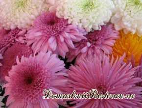 Шикарные хризантемы