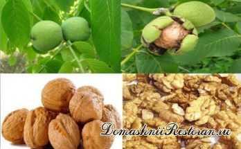 Польза пророщенных грецких орехов