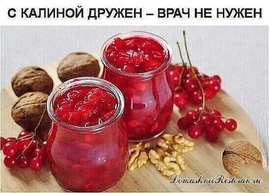Ягода Калина ✨ Калина ~ одна из самых ПОЛЕЗНЫХ ягод в природе